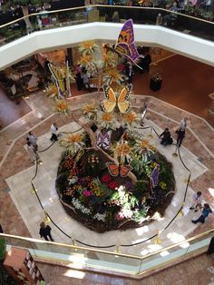 Amazing garden display in the center court of South Coast Plaza - butterflies made with flowers on mount