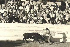 plaza toros Muniesa (Teruel)