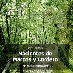 Trece túneles excavados en las escarpadas laderas del Barranco del Agua permiten seguir a pie (y con linterna) el canal que capta dos de los manantiales más caudalosos de La Palma. La vista del precipicio es imponente. Y la ducha, más que segura. Apoya al #RincónMarcosyCordero