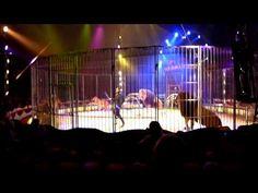 Circus Herman Renz  in Uithoorn 2011_ De leeuwen