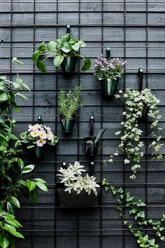 34 Nice Outdoor Hanging Plants Design Ideas - Every home becomes cozier with some hanging or potted indoor plants. For the garden or along the front walkway, outdoor artificial plants will do. Hanging Plants Outdoor, Indoor Plants, Indoor Outdoor, Outdoor Wall Planters, Concrete Planters, Hanging Planters, Hanging Plant Wall, Outdoor Balcony, Hanging Basket