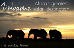 Back to Zimbabwe for Africa's Greatest Safari | Africa Travel