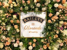 Hayford & Rhodes use coral roses to bring warmth to our flower wall for Baileys at the 2018 Balance Festival at London's Truman Brewery. Coral Roses, Live Coral, Winter Night, Blooming Flowers, Beach Holiday, Baileys, Color Of The Year, Chrysanthemum, Rhodes