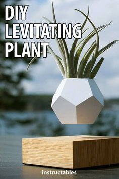 Make a plant levitate with a printed planter, laser cut base, and levitation module. Diy House Projects, Wood Projects, Projects To Try, 3d Printer Projects, Concrete Crafts, Concrete Planters, Concrete Lamp, Fun Crafts, Diy And Crafts