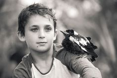 """Penguin"" the-magpie-rescued as a baby 2013. friendship-bloom-family-australia"