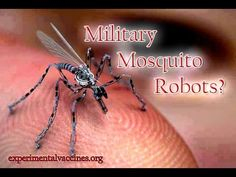 Military Mosquito Robots Collecting DNA & Blood! http://madashellnews.com