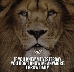 If you don't change daily you don't grow