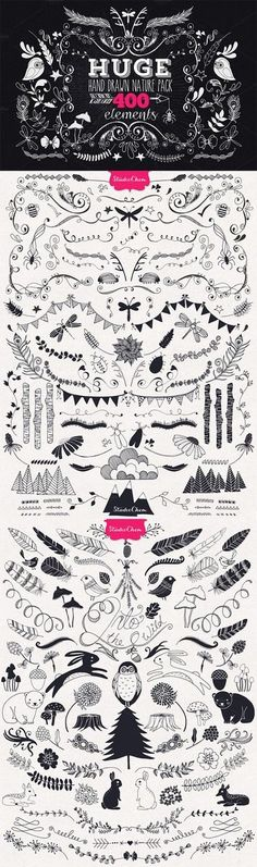 Hand drawn Nature Pack Elements by Studio Chem on Creative Market