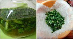 Prostriedok, ktorý pomohol zbaviť sa hemoroidov raz a navždy, mne, mojej priateľke, ktorá mi ho poradila a veľa iným ľuďom s týmto problémom – Báječne nápady Seaweed Salad, Aloe Vera, Ethnic Recipes, Food, Essen, Meals, Yemek, Eten