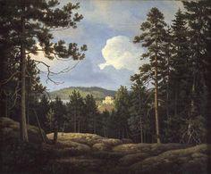 Haminalahden kartano Aittokalliolta nähtynä, n.1858 Ferdinand von Wright - Yksityiskokoelma - Kuopion Haminalahti oli paitsi veljesten kotipaikka myös paikka, josta veljekset ammensivat luontokäsityksensä.He olivat hyvinkin läheisessä yhteydessä luontoon ja havainnoivat sitä paljon.Ja he eivät ainoastaan harrastaneet metsästystä,vaan metsästys oli tärkeä osa ruokataloutta siihen aikaan.