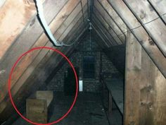 basement ghost picture/ Ghost Photo of the Day: The Attic Dweller Ghost Pictures, Creepy Pictures, Ghost Pics, Spooky Places, Haunted Places, Abandoned Places, Scary Stories, Ghost Stories, Paranormal Pictures