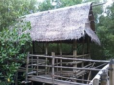 Nipa Cottage within the mangroves, Silay City, Philippines Banaue Rice Terraces, President Of The Philippines, Sagada, Philippines Culture, Baguio, Palawan, Open Water, Countries Of The World, Day Tours