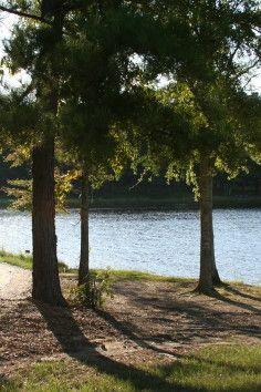 5c5ec2ea9f3d75 63 Best Mississippi Road Trip! images in 2019