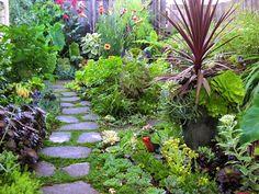 Flowering Herbs for Your Garden   GO GREEN TIP #89: Eco Friendly Gardening For Spring