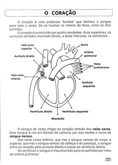 Study Organization, Kids Study, Study Notes, Study Tips, Greys Anatomy, Biology, Cardio, High School, Medicine