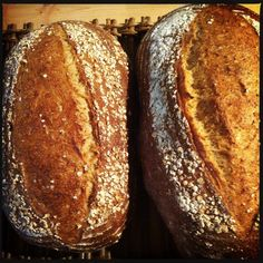 The Vicar Died Laughing: Oat Bread with Wild Yeast