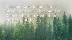 Relaxing Rain Sounds For Sleeping 1 Hour: The Sound of Rain Meditation,M... Relaxing Rain Sounds, Rain Sounds For Sleeping, Relaxing Gif, Relaxing Music, Meditation Exercises, Best Meditation, Meditation For Beginners, Meditation Music, Rain And Thunder Sounds
