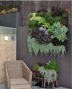 Exteriors -Look at that succulent wall hanging.Inspired Exteriors -Look at that succulent wall hanging. Succulent Gardening, Planting Succulents, Container Gardening, Planting Flowers, Organic Gardening, Gardening Hacks, Succulent Wall Planter, Succulent Frame, Garden Planters