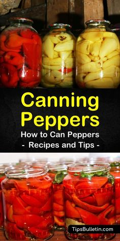Canning Peppers How to Can Peppers Recipes and Tips Canning: Recipes & Tips Canning Hot Peppers, How To Pickle Peppers, Pickling Banana Peppers, Pickling Hot Peppers Recipe, Pickled Sweet Peppers, Pickled Pepper Recipe, Pickled Okra, Easy Canning, Canning Tips