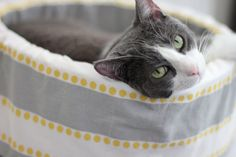 Cat Bed 12 Self Warming Modern Cat Bed in Grey by spenserpets, $44.00