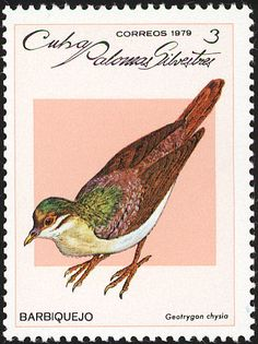 Key West Quail-Dove stamps - mainly images - gallery format