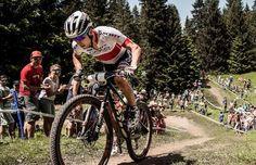 Copa del Mundo XC Schurter y Rissveds vencen en Lenzerheide Mountain Bike Action, Mountain Biking, Bicycle, Vehicles, Board, Cute, Bike, Bicycle Kick, Bicycles