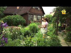 Сказочный ландшафт своими руками (ForumHouseTV) - YouTube