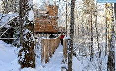 Tree House Rentals Canada