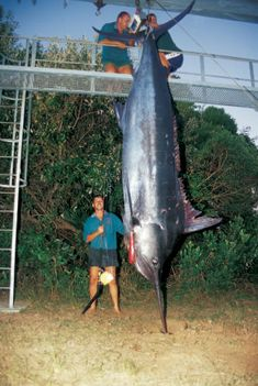 Hennie Seaman with his then world record 80 lb-class blue marlin of 504.8kg caught at Sodwana Bay, South Africa, in April 2002