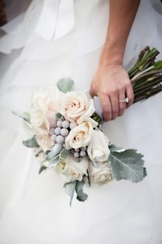 Ivory rose bouquet with silver dusty miller foliage and brunia. The soft silver leaves look beautiful with ivory roses, especially against navy. I would carry the silver foliage through the bridesmaid posies too but perhaps use more spray roses and ranunculus than in the larger bridal bouquet.