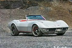 1981 Pontiac Trans Am Daytona 500 Pace Car Turbo 49 Hood
