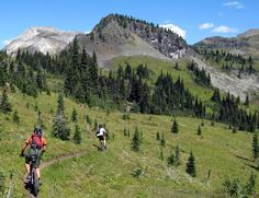Keystone Standard Basin bij Revelstoke geeft je de mooiste Canadese mountainbike ervaring (alleen voor gevorderden).
