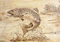 Brown Trout  by JerryWayne Anderson