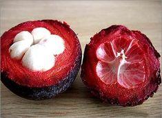 Mangostán -->Nativo de las Islas Sunda y las Molucas. Gusto: Al igual que una explosión de frutas tropicales en la boca.