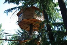 Out n' About Treesort - Cave Junction, Oregon. Treehouse hotel.