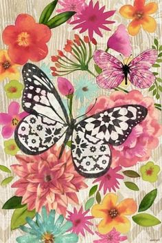 mariposas tatuaje 'Butterfly Dream Vert' By Jennifer Brinley. Butterfly Painting, Butterfly Wallpaper, Butterfly Art, Paper Butterflies, Beautiful Butterflies, Butterfly Pictures, Insect Art, Arabesque, In Kindergarten