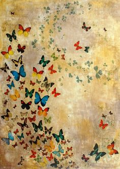 """Summer Butterflies"" by Lily Greenwood"
