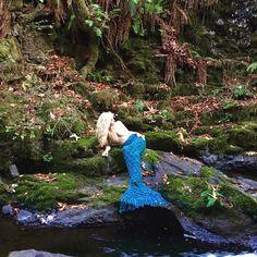 Be Your Divine Self! Harness your Mermaid Tail Blanket, Yarn Bombing, Merfolk, Street Art, Surfing, Mermaids, Enchanted, Instagram Posts, Wonderland