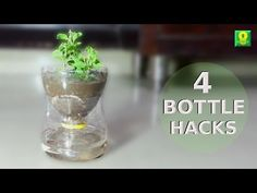 5 Creative Ways to Reuse and Recycle Plastic Bottles - YouTube