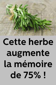 Cette herbe augmente la mémoire de 75% ! Parsley, Home Remedies, Body Care, Health And Beauty, Detox, Nutrition, Medicine, Health Fitness, Herbs