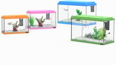 FUNNY FISH :: Aquatlantis Aquarium - Aquariums, Terrariums & Accessories Manufacturing Funny Fish, Fishing Humor, Terrariums, Aquariums, Accessories, Home Decor, Terraria, Room Decor, Fish Tanks