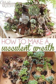 Make your own DIY Succulent Wreath- Unique and gorgeous!