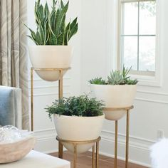 Repost from @allporju - Bringing the outdoors in is one of our go-to tips to freshen up a space. We've talked about the importance of plants in your home before, today we're confessing our #APJcrush on these @globalviews #StudioAHome Wise Egg planters!
