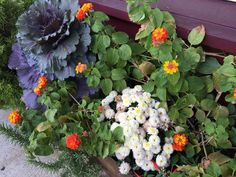 Nice fall container in October