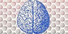 Here is a list of 7 hobbies that make you smarter backed by science.