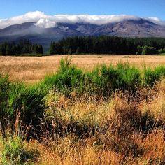 Mount Tongariro: Lining up for today's Waitangi Day hike of the Tongariro Crossing, New Zealand.