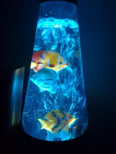 Make A Groovy Lava Lamp | Awesome, Lava Lamps And Fish, Reel Combo
