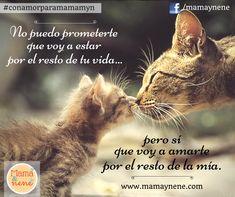 Con amor para mamá #conamorparamamamyn #frases #mothersday #diadelamadre #maternidad #mom #mamá