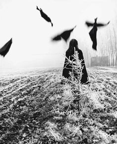 Scarecrow, 1968 - by Mario Lasalandra Italian Mario, Dark Photography, Black And White Photography, Photo Black, Photo S, White Raven, Great Shots, Best Photographers, Double Exposure