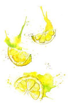 Amy Holliday Illustration : More Fruits: Lemons and Blackberries Watercolor Fruit, Watercolour Painting, Painting & Drawing, Lemon Painting, Painting Fur, Fruit Painting, Watercolor Flowers, L'art Du Fruit, Fruit Art